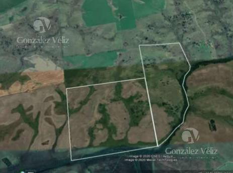 Foto Campo en Venta en  Jose Enrique Rodo ,  Soriano  Campo - Paraje San Martin 275 Hás - Departamento de Soriano