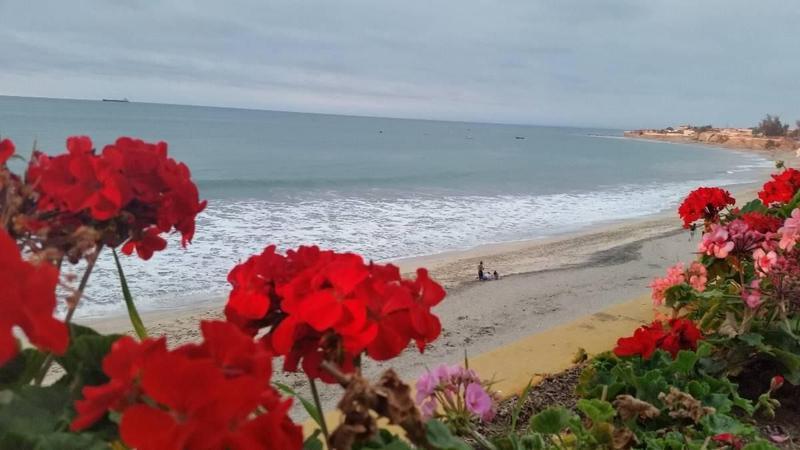 Foto Terreno en Venta en  Ballenita,  Santa Elena      Vendo Terreno en Ballenita  Frente del Mar con casa