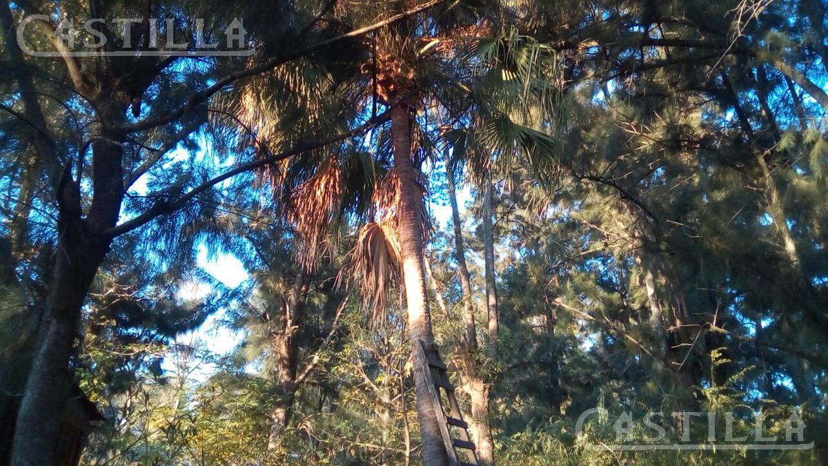 Foto Terreno en Venta en  Espera,  Zona Delta Tigre  Arroyo Espera muelle Villa Indiana