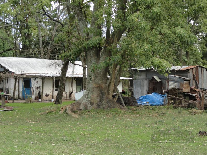 Foto Campo en Venta en  Villanueva,  General Paz  16 HA VILLA NUEVA