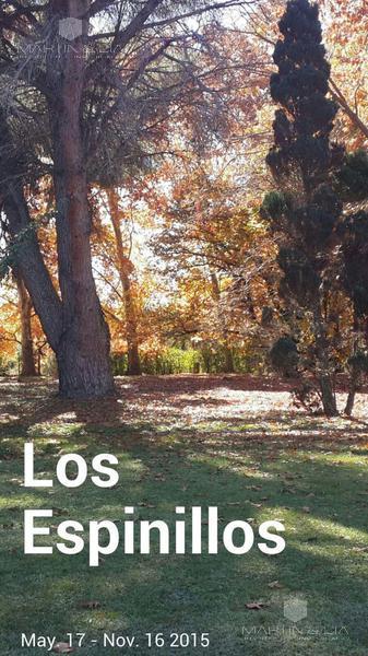 Foto Quinta en Venta en  Las Calles,  San Alberto  Las Calles, Camino al Huaico