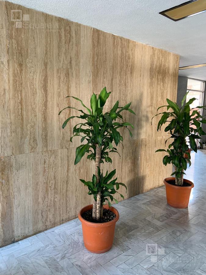Foto Departamento en Venta en  Gabriel Pastor,  Puebla  Depto en Venta de 170 m2, Gabriel Pastor