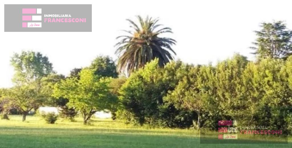 Foto Terreno en Venta en  Villa Elisa,  La Plata  50 esq 1 (ex 7)