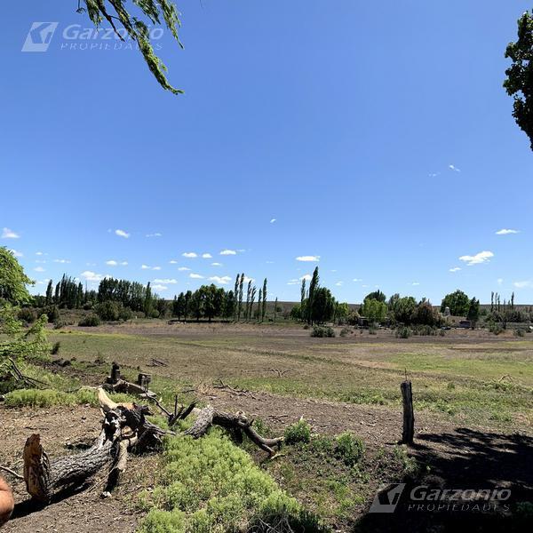 Foto Chacra en Venta en  Trelew ,  Chubut  Chacra 20ha con vivienda - Treorky