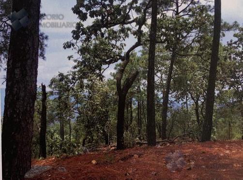 Foto Terreno en Venta en  Pueblo Cuyutlan,  Mixtlán  Terreno Rústico Maderable Venta Cuyutlán, Jal. $60,000,000 Ezetor E2