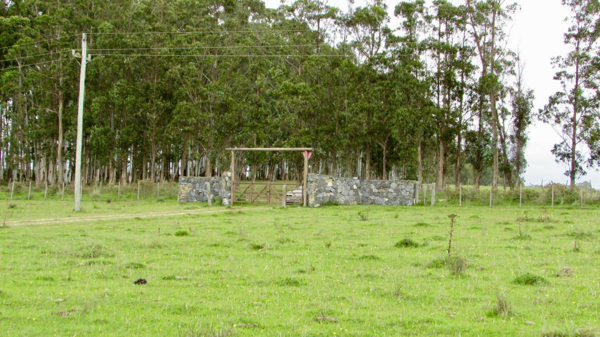 Foto Terreno en Venta en  José Ignacio ,  Maldonado  Venta terreno en Chacra maritima, Altos Jose Igancio, barrio privado