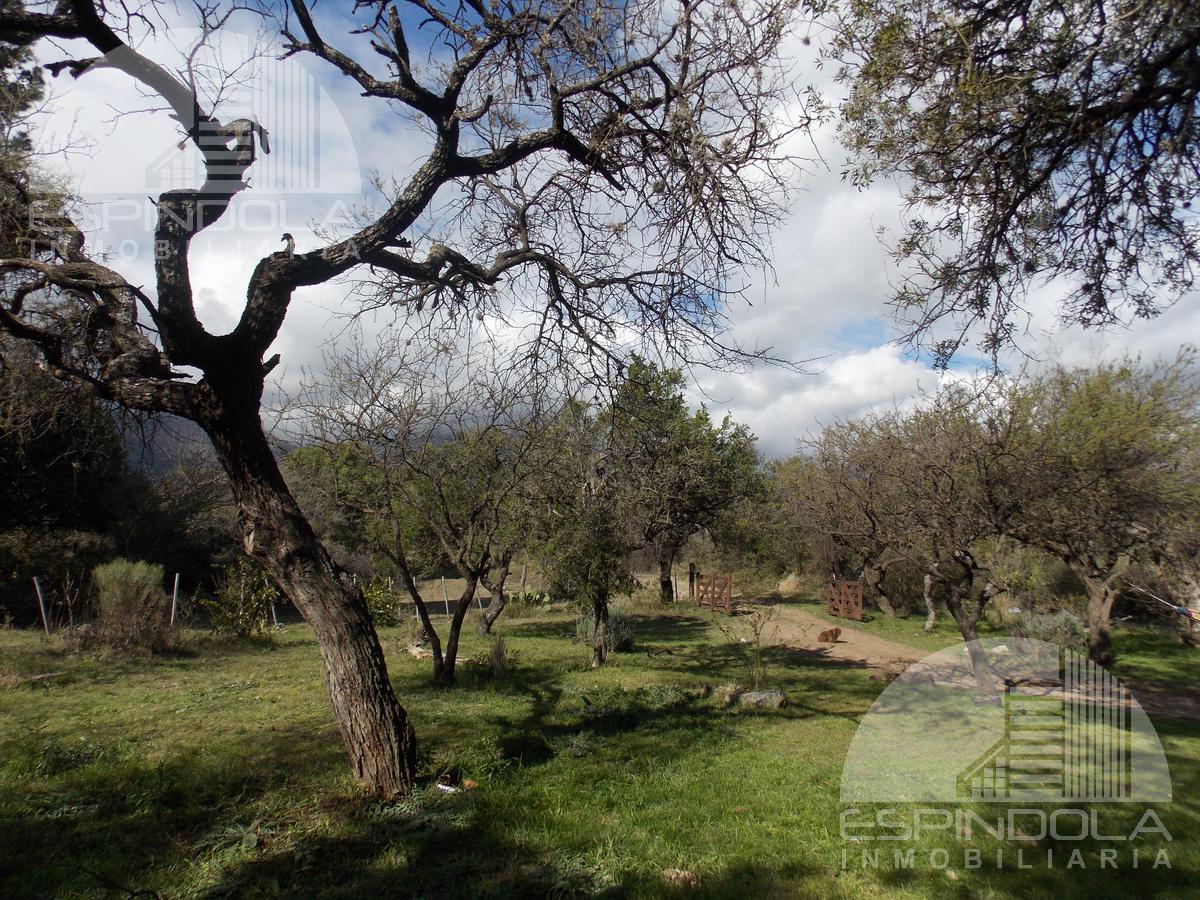 Foto Casa en Venta en  Cerro de Oro,  Merlo  Calaguala