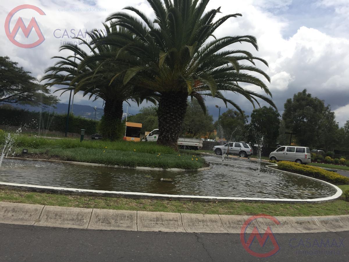Foto Terreno en Venta en  Puembo,  Quito  Puembo sector Club Arrayanes