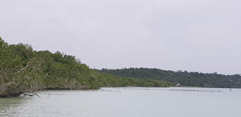 Bacalar Terreno for Venta scene image 11