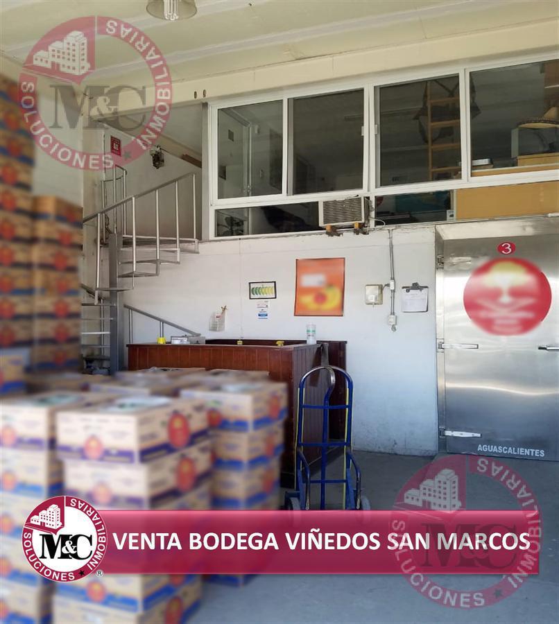 Foto Bodega Industrial en Venta en  Zona comercial Centro Distribuidor de Básicos Viñedos San Marcos,  Jesús María  M C Venta de Bodega comercial en Viñedos San Marcos con cámara de refrigeración.
