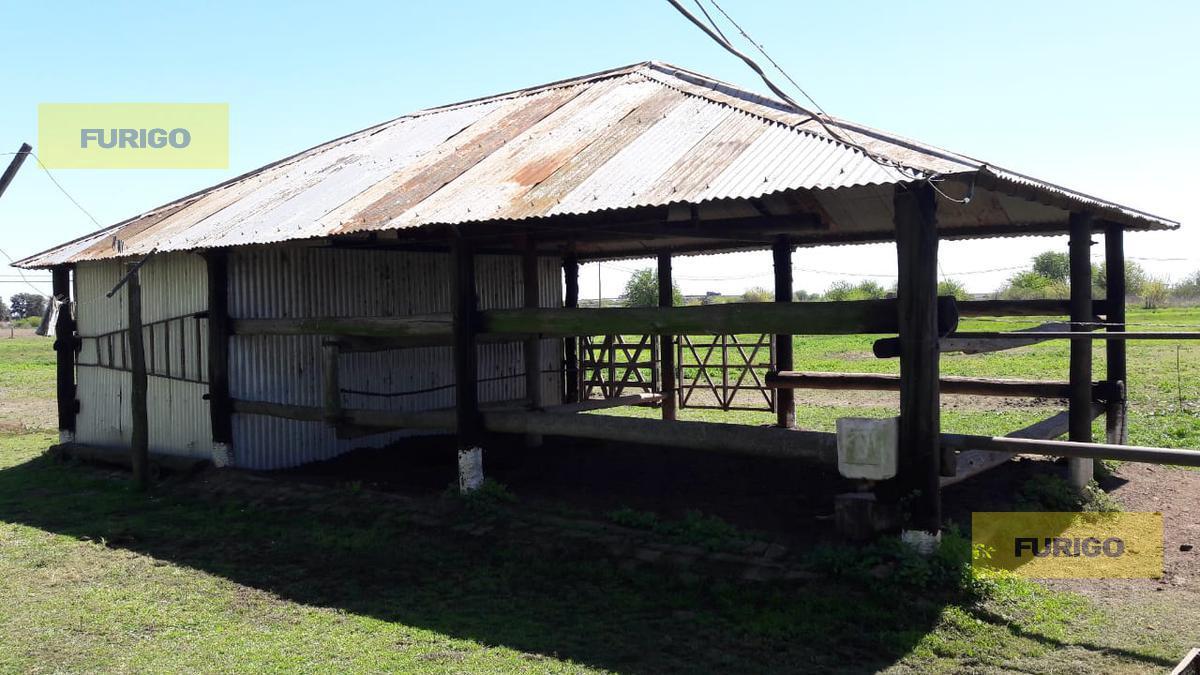 Foto Campo en Venta en  Zavalla,  Rosario  Frente al Parque Villarino