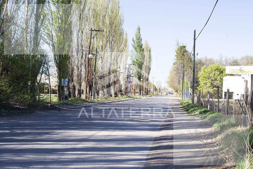 Foto Terreno en Venta en  Cipolletti,  General Roca          LOTEO LOS PLATANOS EN CIPOLLETTI