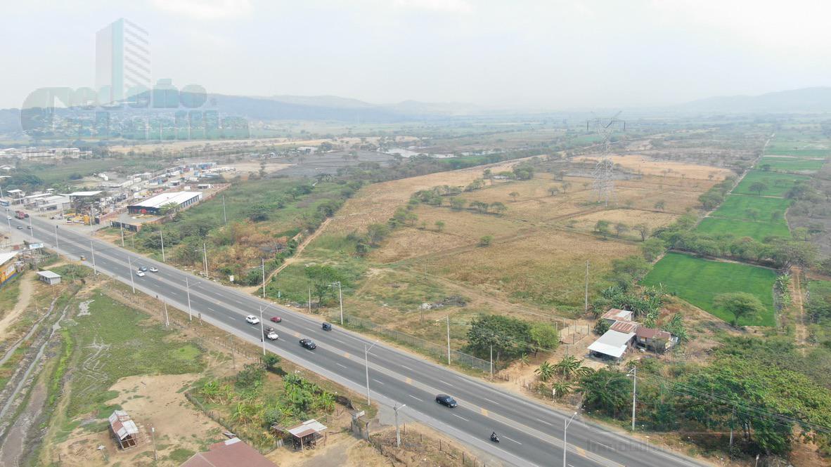 Foto Terreno en Venta en  Norte de Guayaquil,  Guayaquil  VENTA DE MACRO LOTE DE OPORTUNIDAD SOBRE LA VIA DAULE CREDITO DIRECTO
