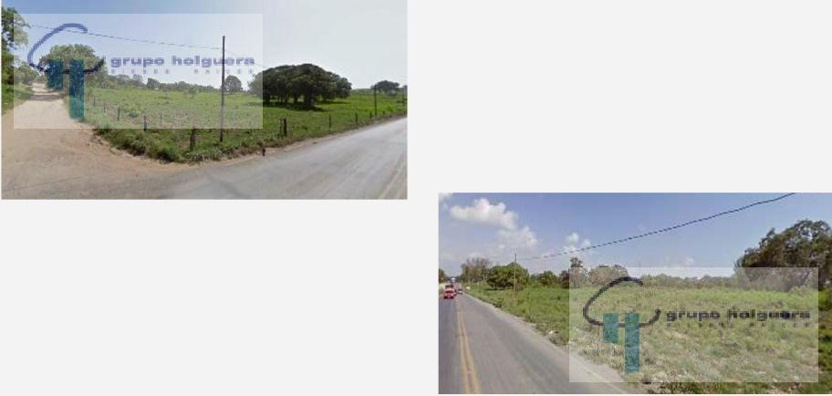 Foto Terreno en Venta en  Tampico Alto ,  Veracruz  TERRENO EN VENTA  UBICADO A 100 METOS DE LA CARRETERA TAMPICO-TAMPICO ALTO, EN CD. CUAUHTEMOC,  VERACRUZ