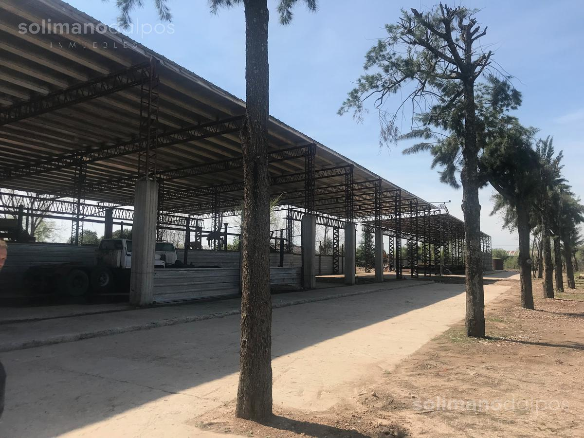 Foto Local en Alquiler en  Benavidez,  Tigre  Agustin Garcia al al 11200