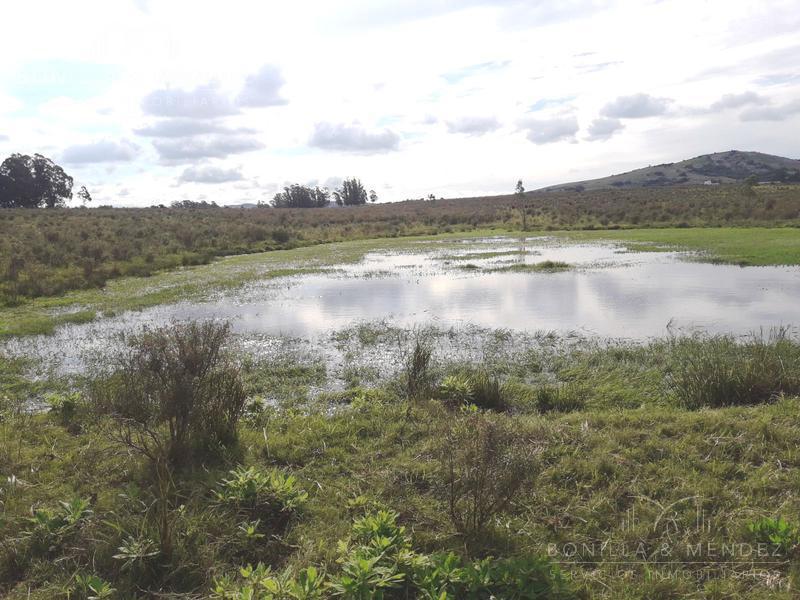 Foto Campo en Venta en  Pan de Azúcar ,  Maldonado  Ruta 9 Pan de Azúcar BAJAMOS EL PRECIO