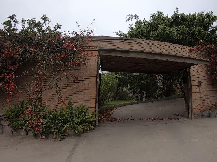 Foto Casa en Venta en  ALAMOS DE MONTERRICO,  Santiago de Surco  ALAMOS DE MONTERRICO