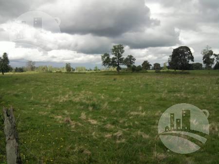 Foto Campo en Venta en  Huanqueros,  San Cristobal  Campo 710 has.