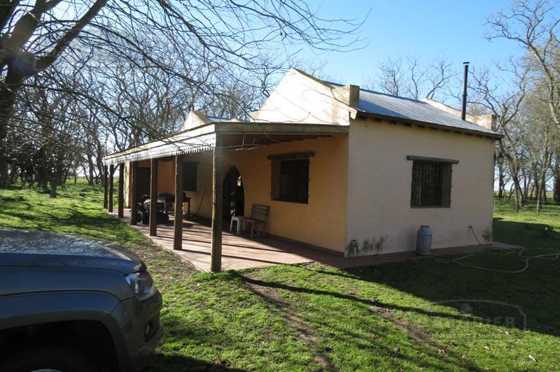 Foto Campo en Venta en  Alvarez Jonte,  Punta Indio  100 HA. JONTE, Verónica
