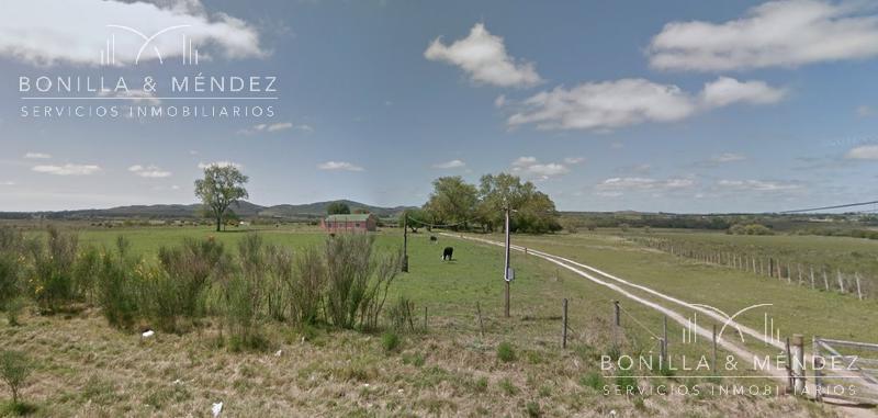Foto Campo en Venta en  Pan de Azúcar ,  Maldonado  Chacra con todos los servicios a solo 3km de Ruta Interbalnearia.
