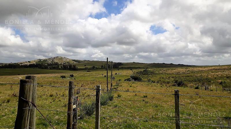 Foto Campo en Venta en  Pan de Azúcar ,  Maldonado  Ruta 9 Paraje Repecho