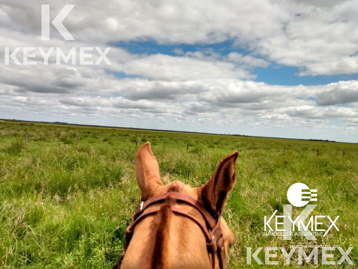 Foto Campo en Alquiler | Venta en  Sauce ,  Corrientes  Sauce, Corrientes