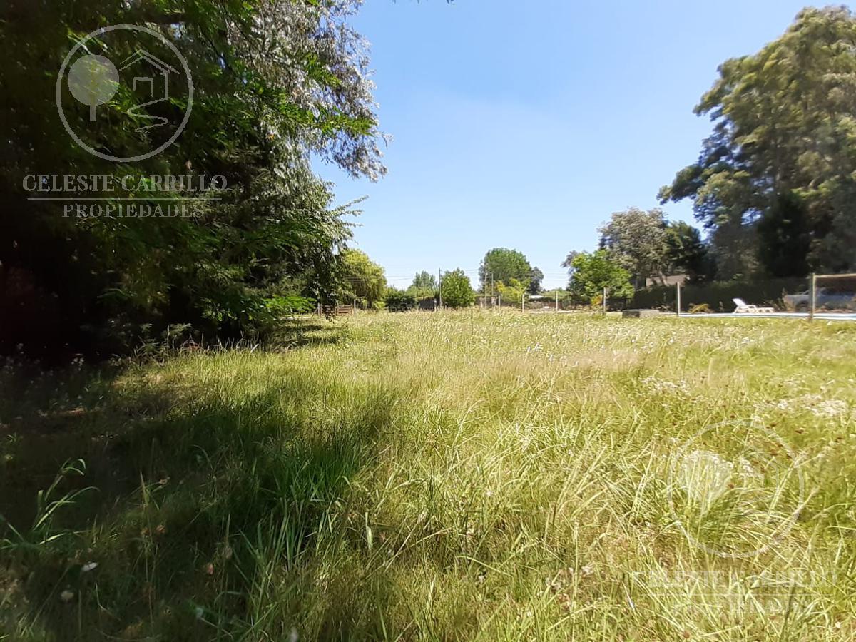 Foto Terreno en Venta en  Parque Sakura,  Countries/B.Cerrado (Exaltación)  Ricardo Rojas al 400