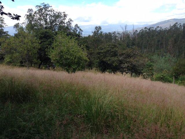 Foto Terreno en Venta en  Quito ,  Pichincha  Terreno de Venta en Nayon Quito Ecuador