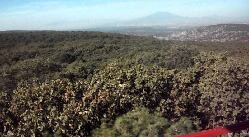 Foto Terreno en Venta en  Bosques de la Primavera,  Zapopan  Terreno Venta La Primavera $6,580,000 A257 E1