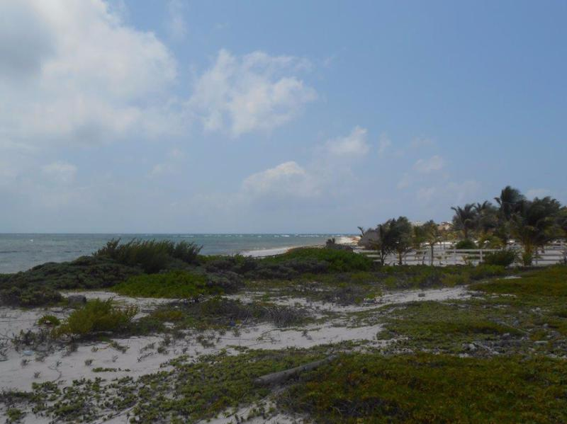 Mahahual Land for Sale scene image 5