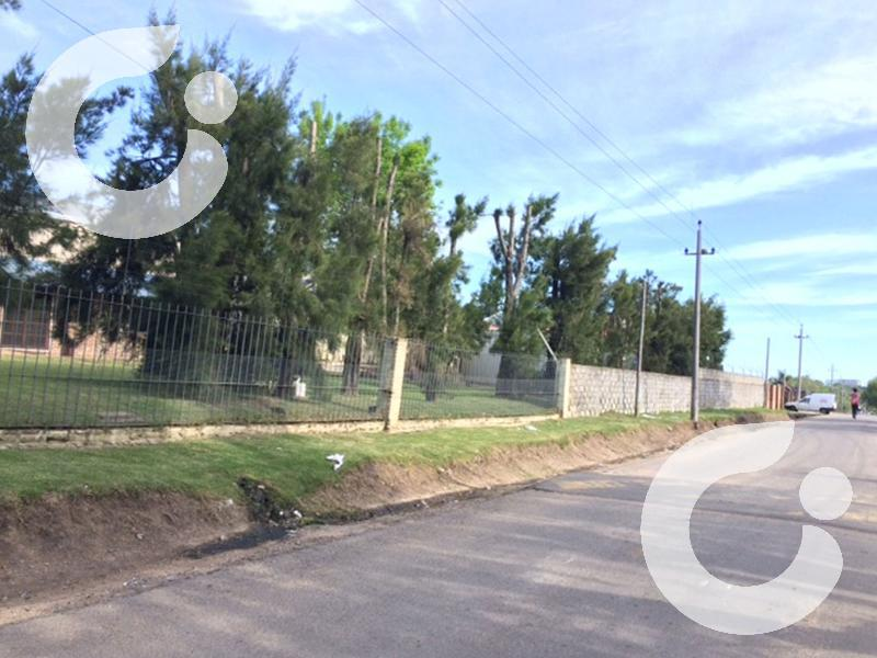 Foto Local en Venta en  Carrasco Norte ,  Montevideo  LOCAL INDUSTRIAL/DEPOSITOS/ INVERSIONISTA  MONTEVIDEO