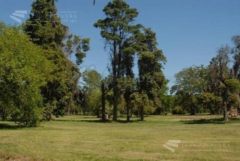 Foto Terreno en Venta en  San Matias,  Countries/B.Cerrado  San Matias, Altos de Maschwitz
