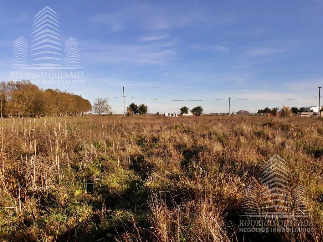 Foto Terreno en Venta en  General Lavalle,  General Lavalle  FRACCION DE 3656 mts²
