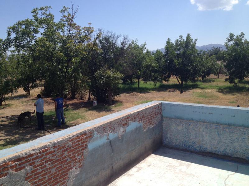 Foto Finca en Venta en  Los Nogales,  Chihuahua  Granja Col Los Nogales