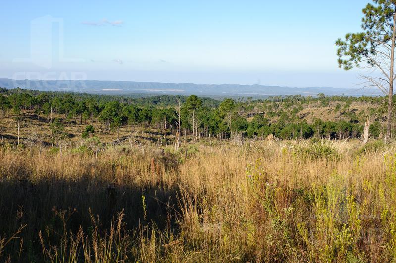 Foto Terreno en Venta |  en  Yacanto Calamuchita,  Calamuchita  Villa Yacanto de Calamuchita  Ruta Provincial 228 Km