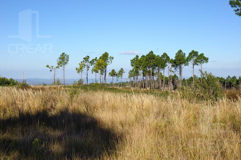 Foto Terreno en Venta en  Yacanto Calamuchita,  Calamuchita  Villa Yacanto de Calamuchita  Ruta Provincial 228 Km 72718 m2