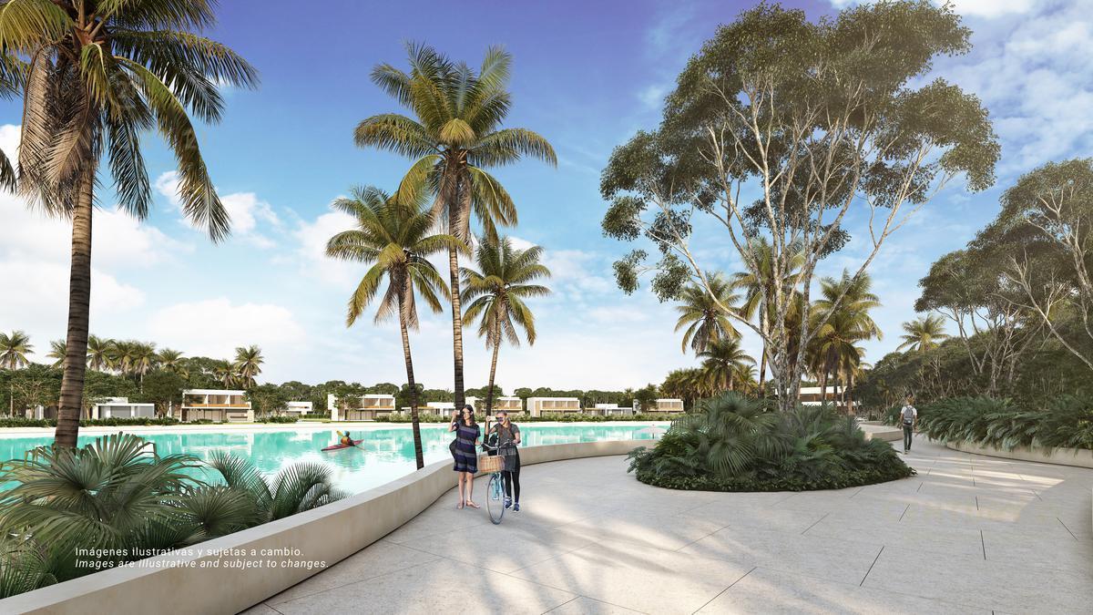 Quintana Roo Terreno for Venta scene image 14