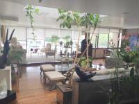 Foto Departamento en Renta en  Bosques de las Lomas,  Cuajimalpa de Morelos  Bonito PH en Renta en Bosques de las Lomas, Cuajimalpa