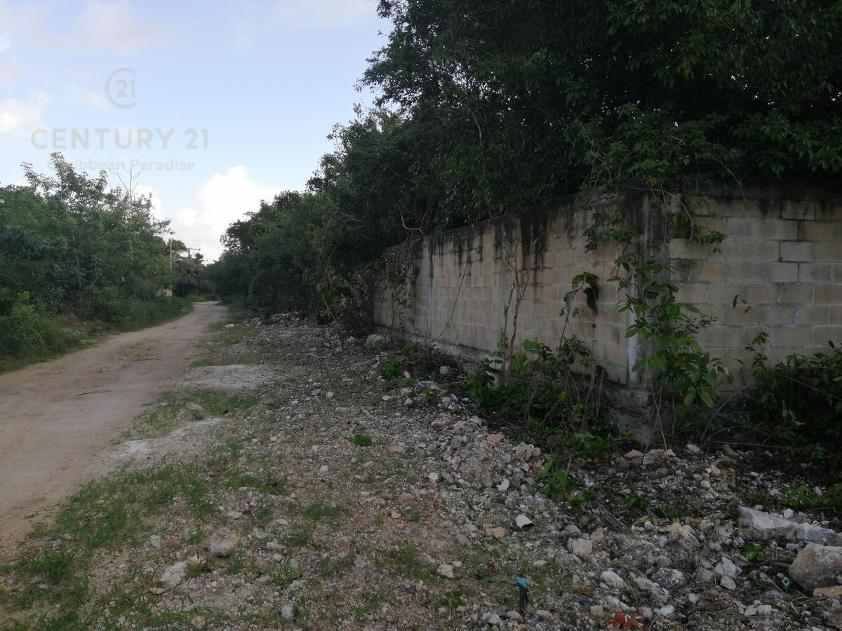 Foto Terreno en Renta en  Benito Juárez ,  Quintana Roo  6500 m2. Excelente terreno en RENTA av. Colegios  C2710