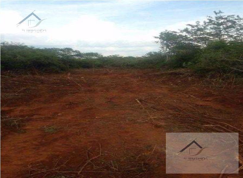 Foto Terreno en Venta en  Pueblo Dzununcan,  Mérida  Ideal para desarrollo de vivienda, casa de campo Terreno en Dzunucan en venta