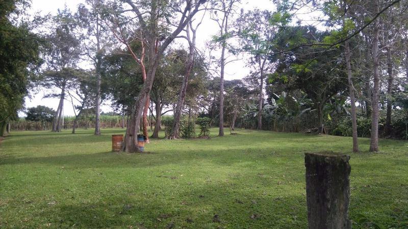 Foto Terreno en Venta en  Pueblo El Lencero,  Emiliano Zapata  Lotes vivienda en El Lencero Veracruz
