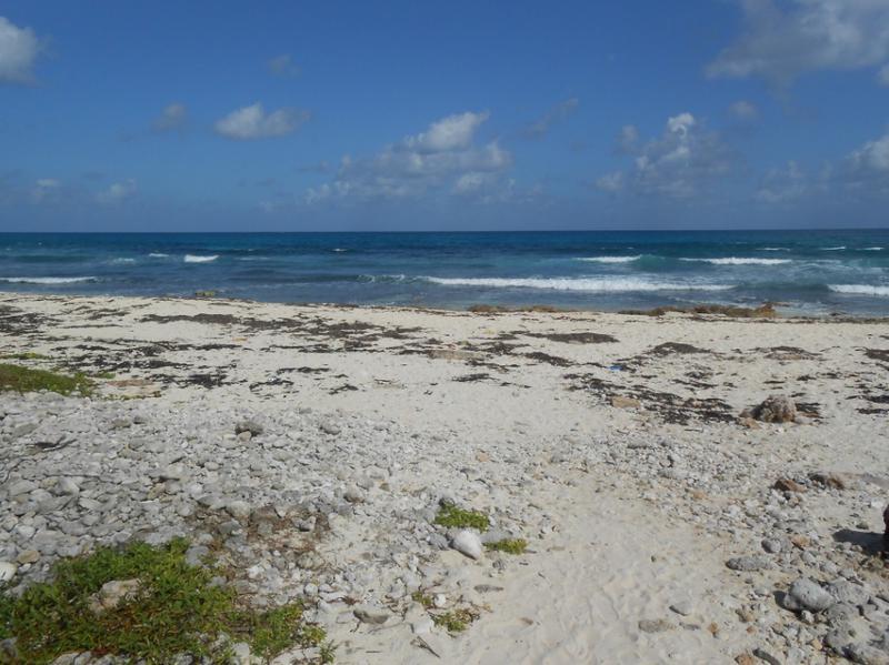 Isla Mujeres Centro Land for Sale scene image 2
