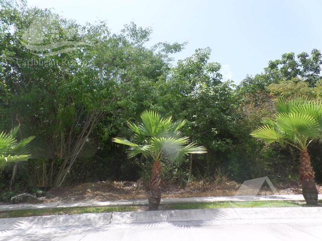 Foto Terreno en Venta en  Villa Magna,  Cancún  Terreno en venta en Villa Magna Cancun