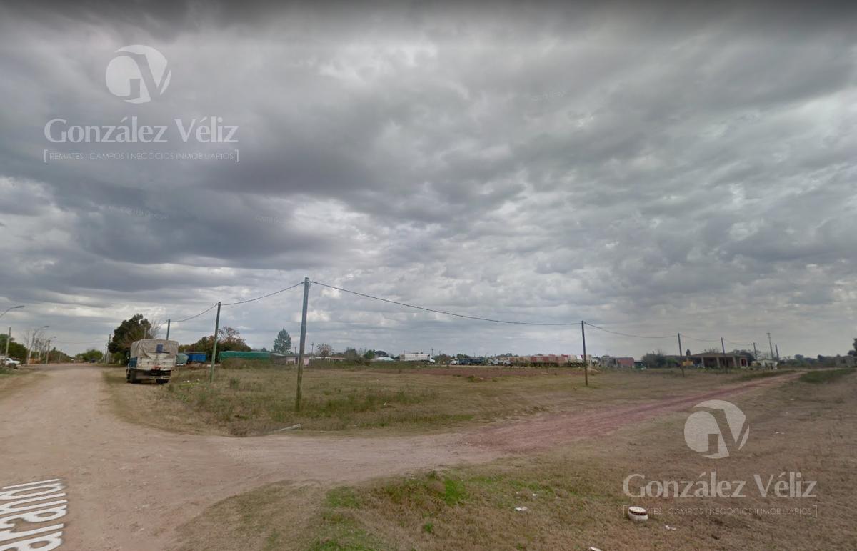 Foto Terreno en Venta en  Carmelo ,  Colonia  Sarandi Pasando Bolivia - Zona Norte