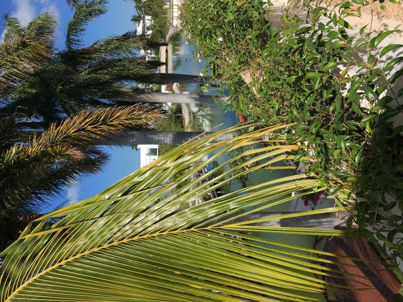 Foto Casa en Venta en  Cancún,  Benito Juárez  .Casa a Canal, CON MUELLE en Isla Dorada