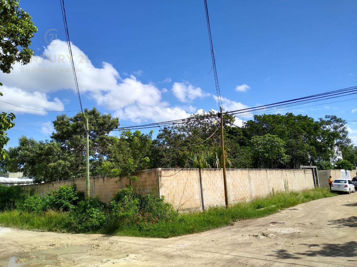 Benito Juárez Land for Sale scene image 0