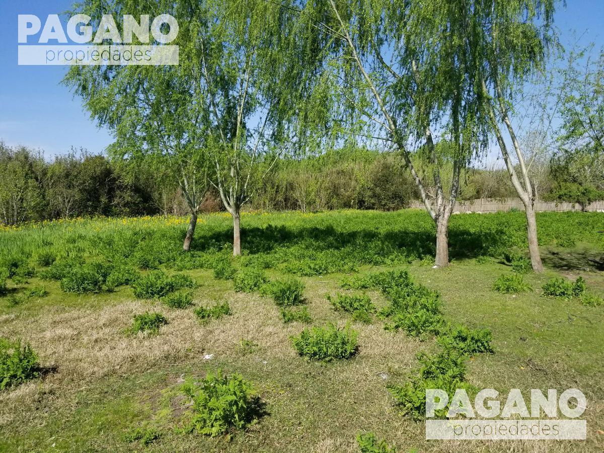 Foto Terreno en Venta en  Berisso ,  G.B.A. Zona Sur  Camino 3 de abril entre Bagliardi y 66