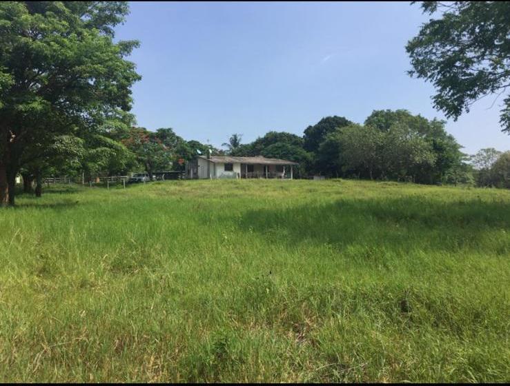 Foto Terreno en Venta en  Alto Lucero de Gutiérrez Barrios ,  Veracruz  Rancho de 80 hectáreas en venta en Alto Lucero, Veracruz