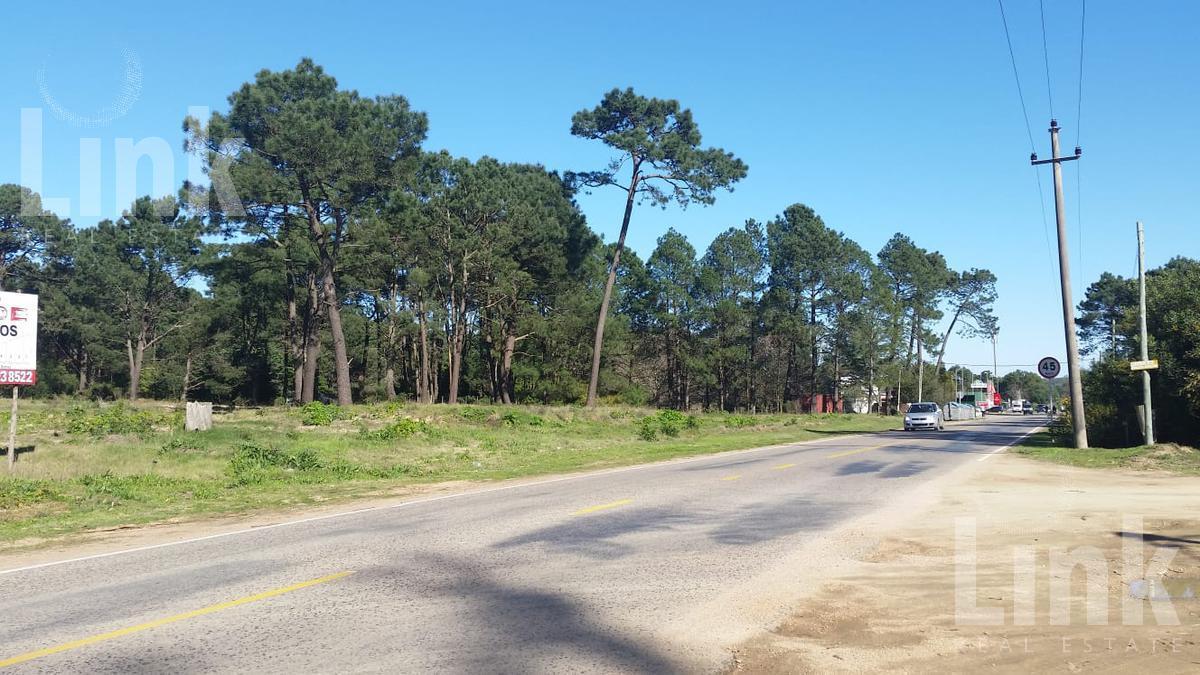 Foto Terreno en Venta en  Pinares,  Punta del Este  Pinares
