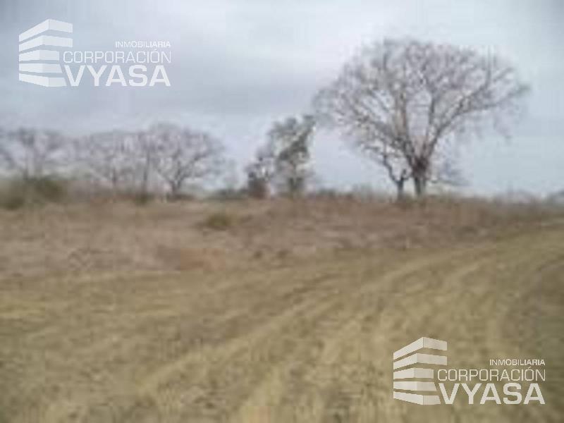 Foto Terreno en Venta en  Centro de Manta,  Manta  Manta - Ruta del Sol - Cerca a Urb. Manta Azul - Terreno de 3,70 Has. en venta